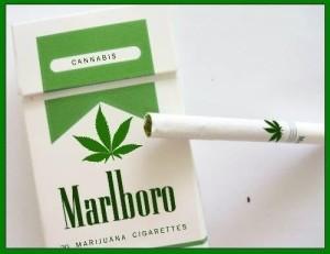 MARLBORO-300x231