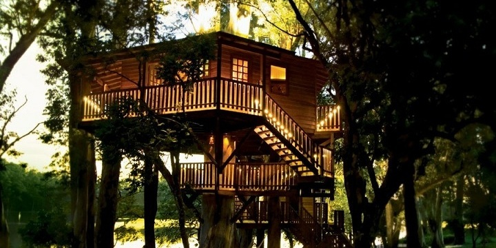 The Sky is the limit: Enjoy special moments together in tree tops