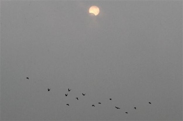 A flock of birds fly past the eclipse over Beijing, China